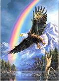 EAGLE RAINBOW 40X50CM SQUARE DRILL