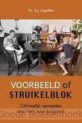 VOORBEELD OF STRUIKELBLOK